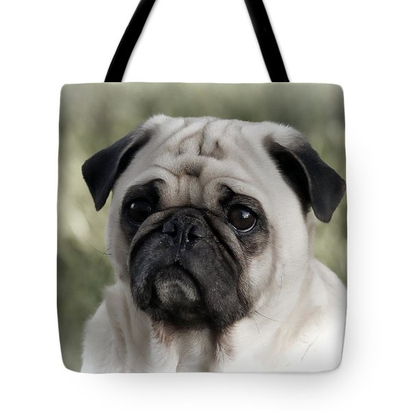 A Pug Portrait Tote Bag