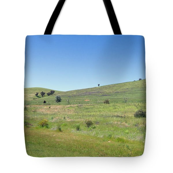 Tote Bag featuring the photograph A Quiet Interlude by Linda Lees