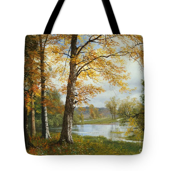 A Quiet Lake Tote Bag