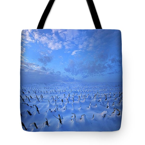 Tote Bag featuring the photograph A Quiet Light Purely Seen by Phil Koch