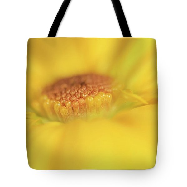 A Ray Of Sunshine Tote Bag by Roy McPeak