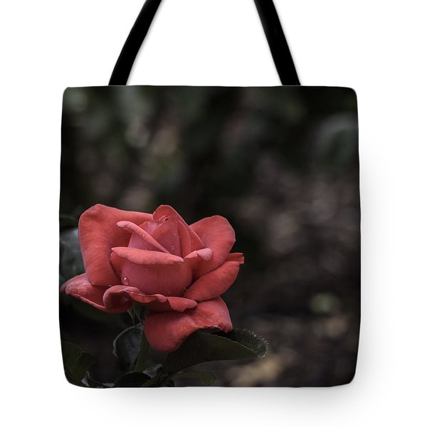 A Red Beauty Tote Bag by Ed Clark