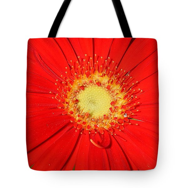 Tote Bag featuring the photograph A Red Explosion by Sheila Brown