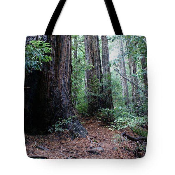 A Redwood Trail Tote Bag by Ben Upham III