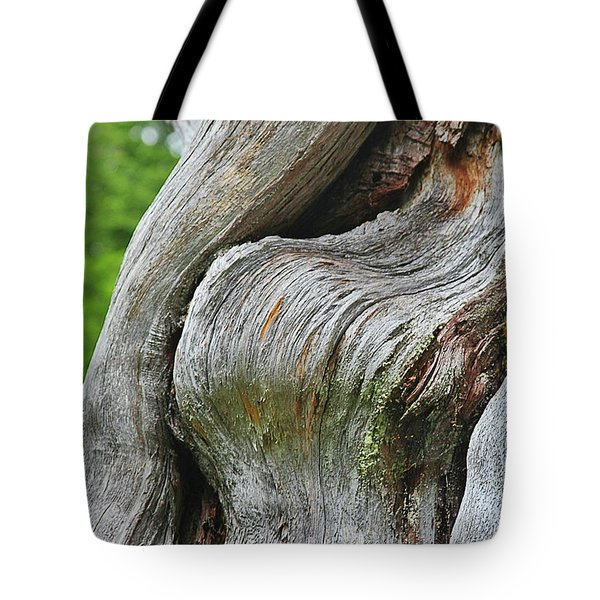 A Remarkable Tree - Duncan Western Red Cedar Olympic National Park Wa Tote Bag by Christine Till