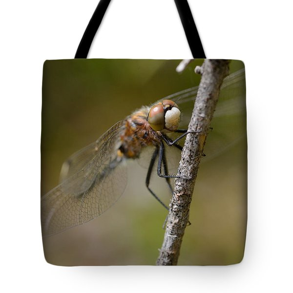 A Rest Tote Bag