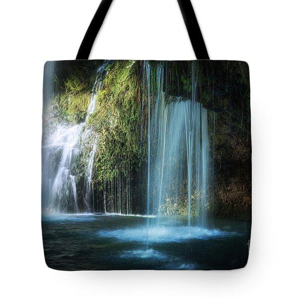 A Resting Place At Natural Falls Tote Bag