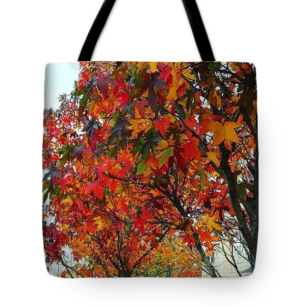 A Riot Of Color Sweet Gum Trees Tote Bag