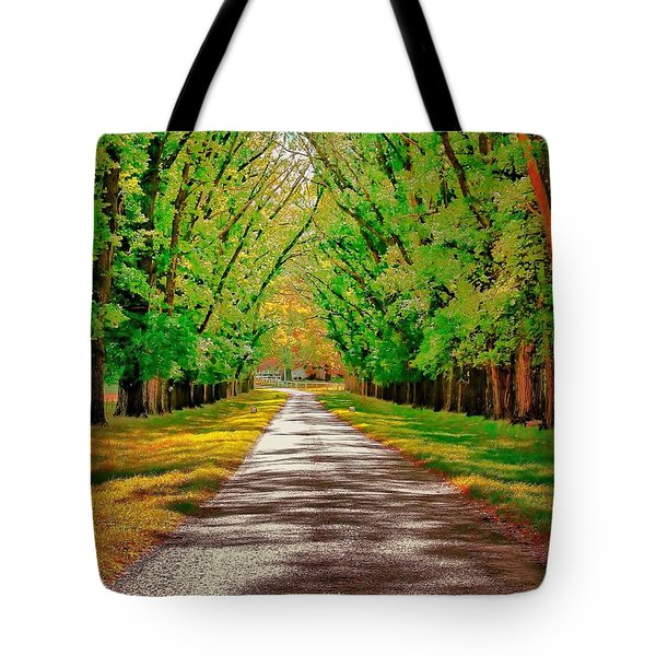 A Road Through Autumn Tote Bag by Wallaroo Images