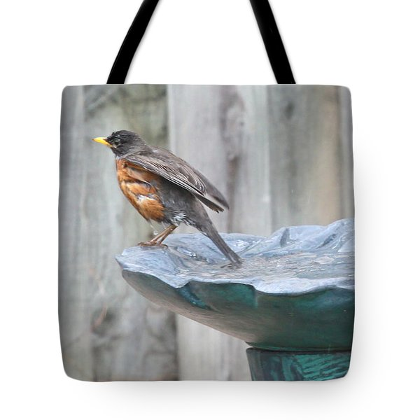 A Robin Relaxes After A Vigourous Bath Tote Bag