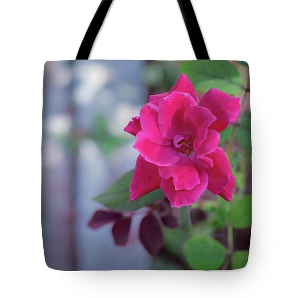 A Rose And A Hard Place Tote Bag by Stefanie Silva
