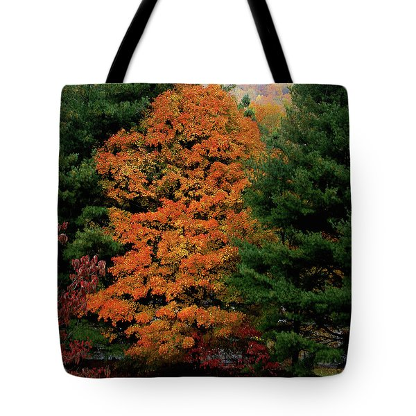A Rose Between Two Thorns Tote Bag by DigiArt Diaries by Vicky B Fuller