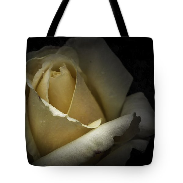 Tote Bag featuring the photograph A Rose by Ryan Photography
