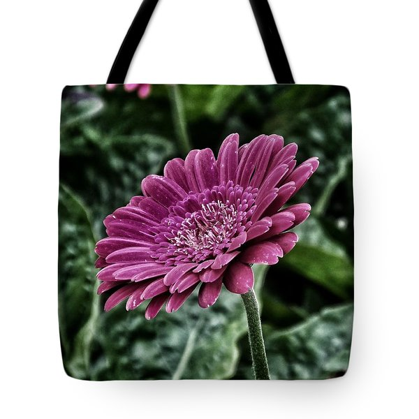 A Shade Of Purple Tote Bag