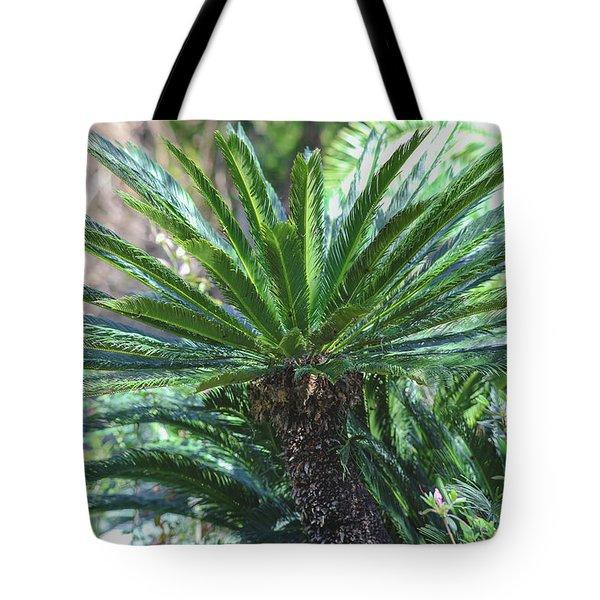 A Shady Palm Tree Tote Bag