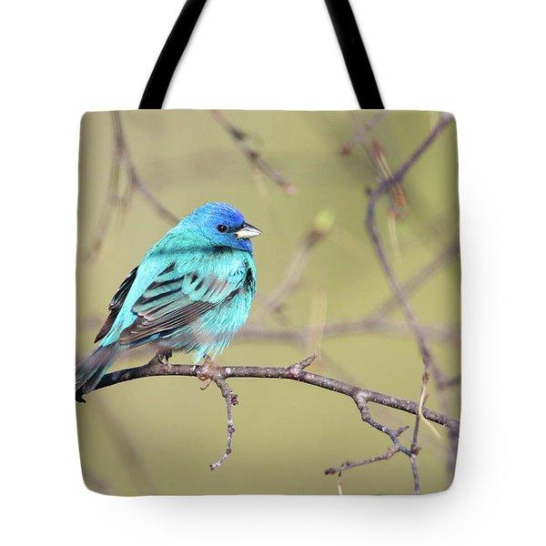 A Shiny Blue Gem Tote Bag