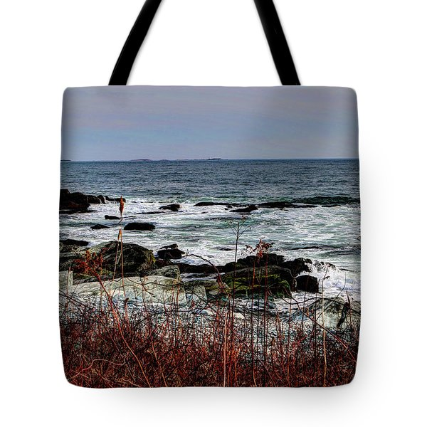 Tote Bag featuring the photograph A Shoreline In New England by Tom Prendergast