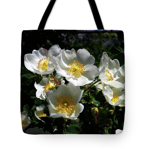 A Short Life But A Merry One Tote Bag