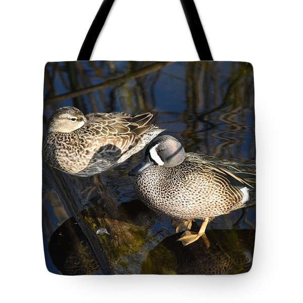 Tote Bag featuring the pyrography A Short Nap by Sally Sperry
