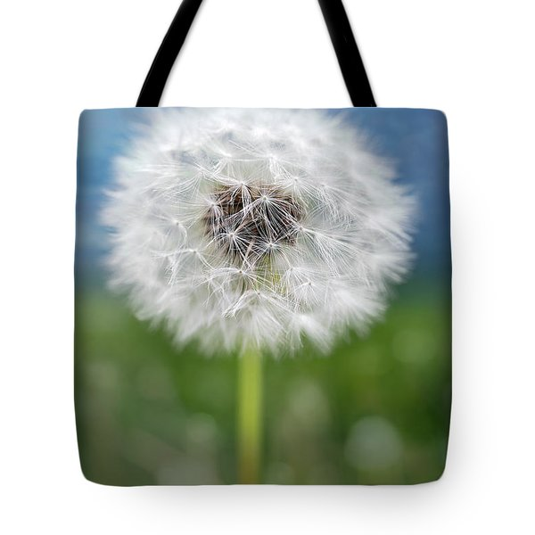 A Single Dandelion Seed Pod Tote Bag