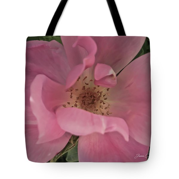 Tote Bag featuring the photograph A Single Pink Rose by Joann Copeland-Paul
