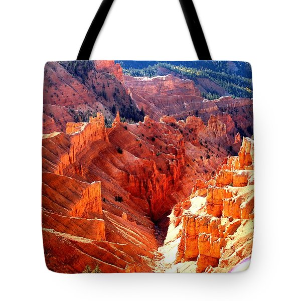 A Slice Of Brice Tote Bag