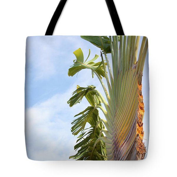 Tote Bag featuring the photograph A Slice Of Nature by Ana Mireles