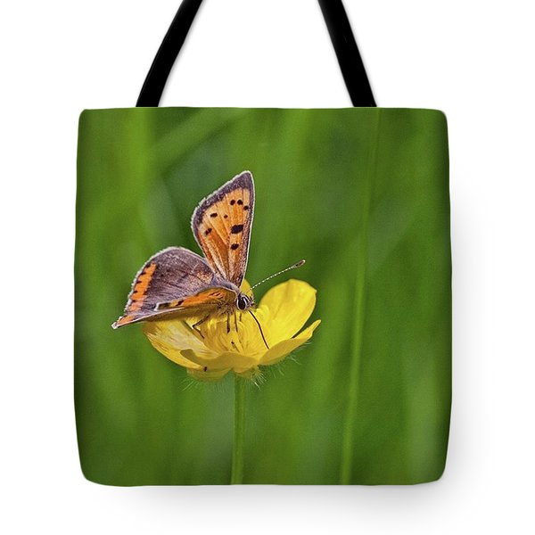 A Small Copper Butterfly (lycaena Tote Bag
