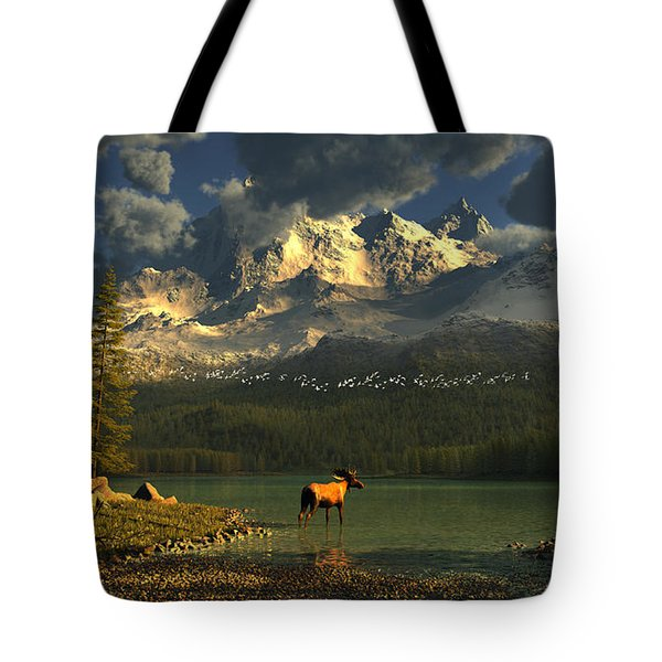 A Small Planet Tote Bag