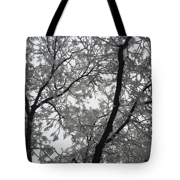 A Snowy Morning Tree Tote Bag