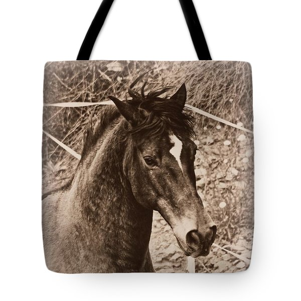 A Spanish Noble Tote Bag