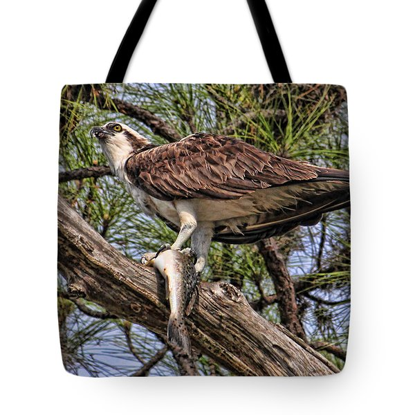 A Speckled Trout Breakfast Tote Bag by HH Photography of Florida