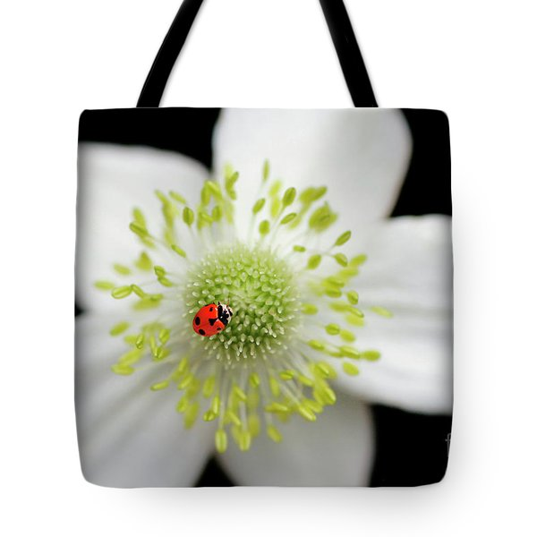 A Spot Of Red Tote Bag