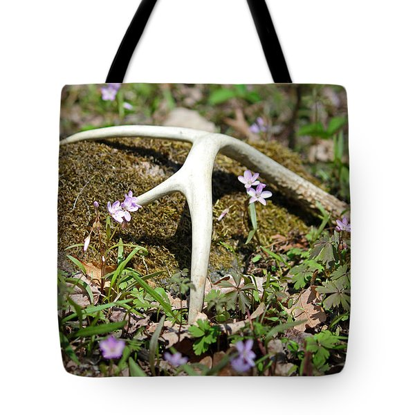 A Spring Treasure Tote Bag