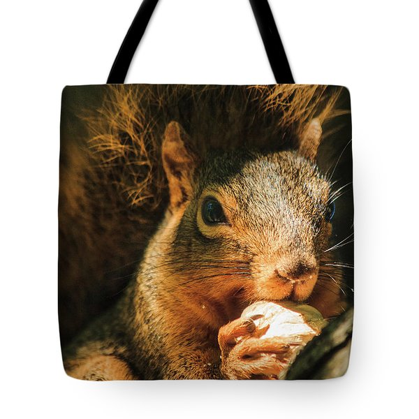 A Squirrel And His Nut Tote Bag by Joni Eskridge