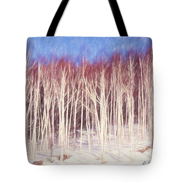 A Stand Of White Birch Trees In Winter. Tote Bag