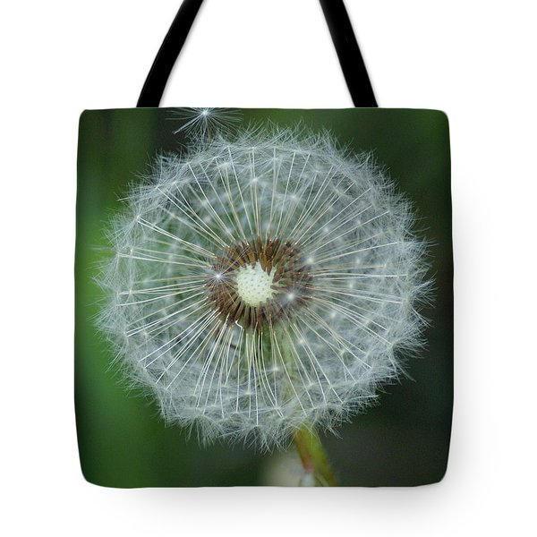 A Star Leaves Home Tote Bag by Ben Upham III