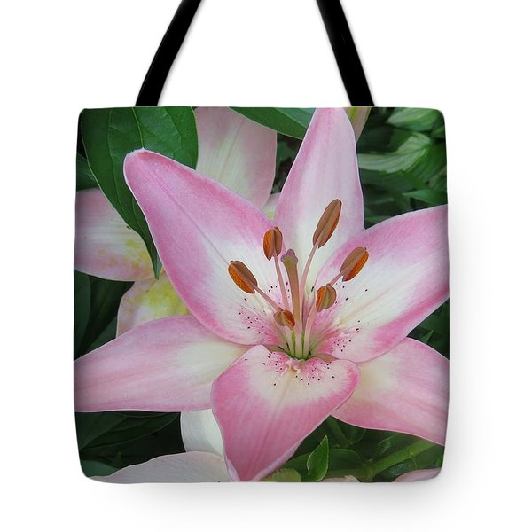 A Star Of Day Tote Bag