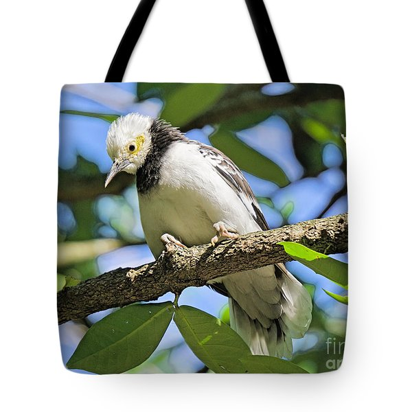 A Starling To Remember Tote Bag