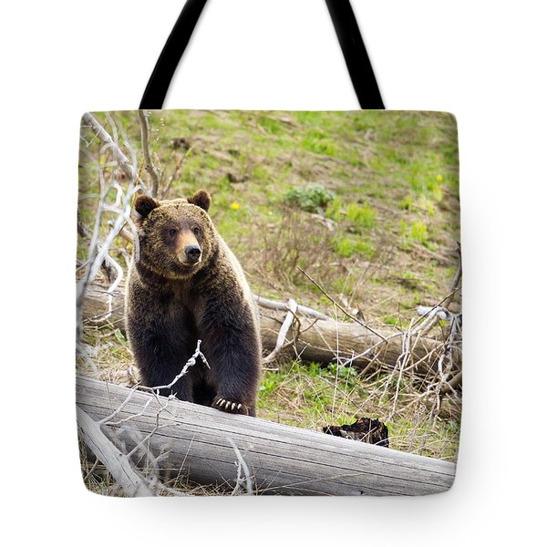 Tote Bag featuring the photograph Over It by Aaron Whittemore