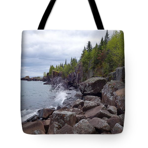 Tote Bag featuring the photograph A Stormy Day In June by Sandra Updyke