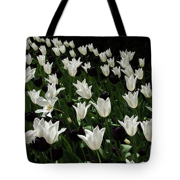 A Study In Black And White Tulips Tote Bag
