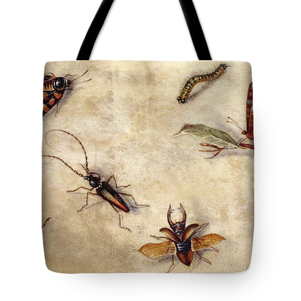 A Study Of Various Insects, Fruit And Animals Tote Bag by Jan Van Kessel the Elder