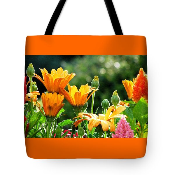 A Summer Celebration Tote Bag by Angela Davies