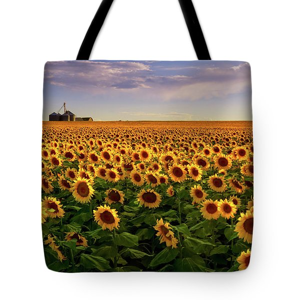 A Summer Evening In Rural Colorado Tote Bag
