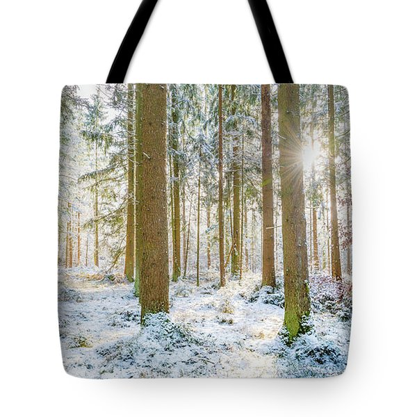 Tote Bag featuring the photograph A Sunny Day In The Winter Forest by Hannes Cmarits