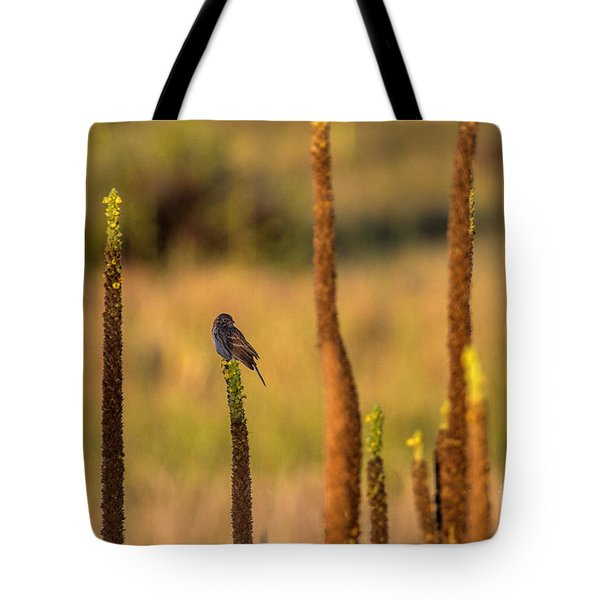 Statuary Tote Bag by Jim Garrison