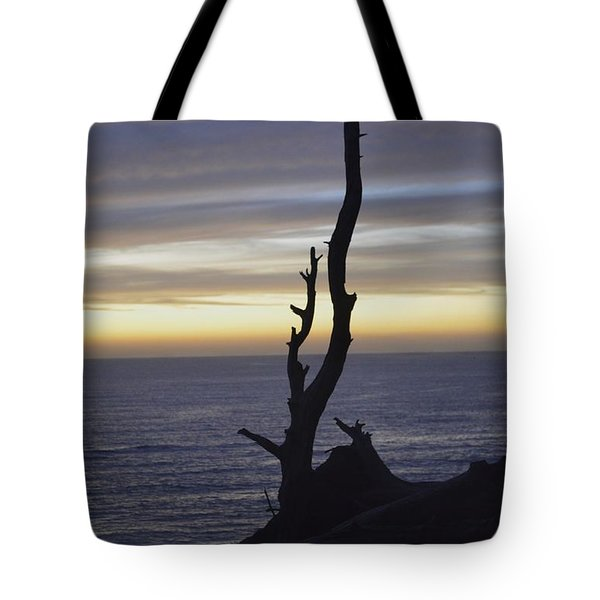 Tote Bag featuring the photograph A Sunset by Alex King