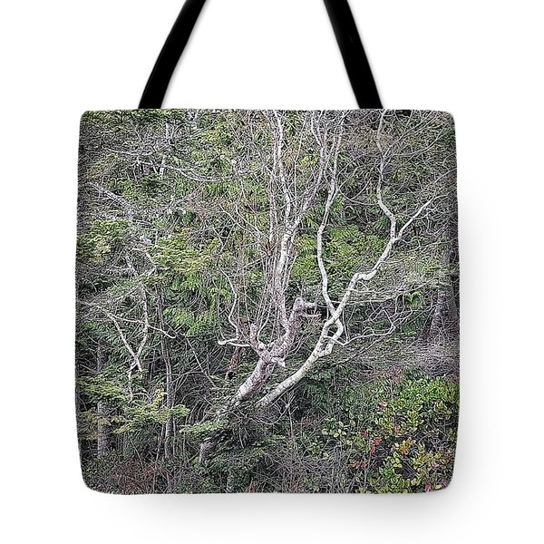 A Tanglewood Tote Bag by Tobeimean Peter