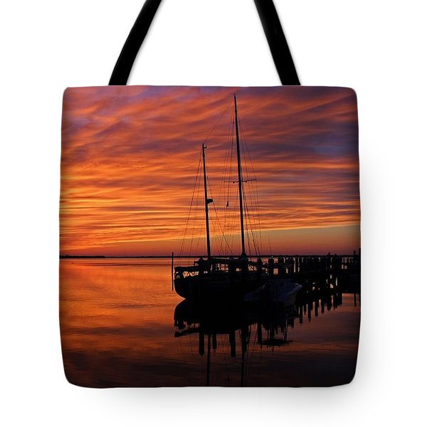 A Tarpon Tryst Tote Bag